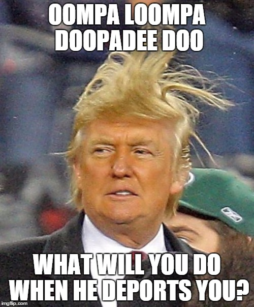 Donald Trumph hair |  OOMPA LOOMPA DOOPADEE DOO; WHAT WILL YOU DO WHEN HE DEPORTS YOU? | image tagged in donald trumph hair | made w/ Imgflip meme maker