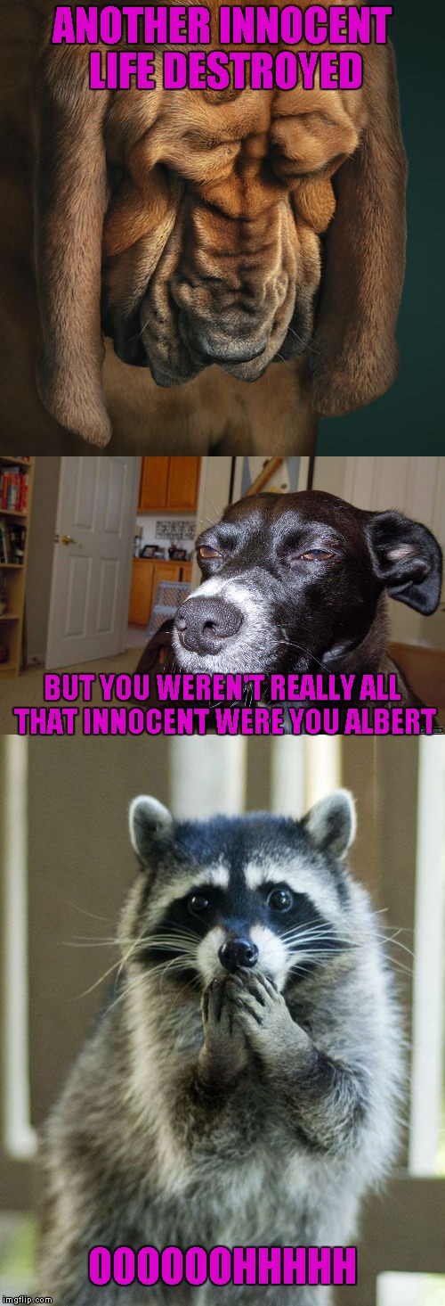 ANOTHER INNOCENT LIFE DESTROYED OOOOOOHHHHH BUT YOU WEREN'T REALLY ALL THAT INNOCENT WERE YOU ALBERT | made w/ Imgflip meme maker