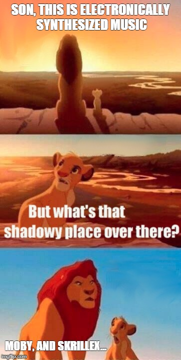Moby and Skrillex | SON, THIS IS ELECTRONICALLY SYNTHESIZED MUSIC MOBY, AND SKRILLEX... | image tagged in memes,simba shadowy place | made w/ Imgflip meme maker