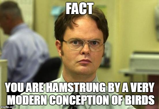 Dwight Schrute Meme |  FACT; YOU ARE HAMSTRUNG BY A VERY MODERN CONCEPTION OF BIRDS | image tagged in memes,dwight schrute | made w/ Imgflip meme maker