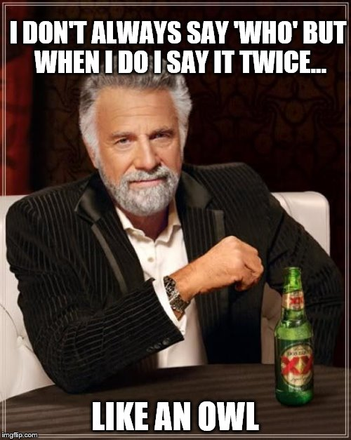 The Most Interesting Man In The World | I DON'T ALWAYS SAY 'WHO' BUT WHEN I DO I SAY IT TWICE... LIKE AN OWL | image tagged in memes,the most interesting man in the world,who,owl | made w/ Imgflip meme maker