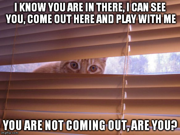 I KNOW YOU ARE IN THERE, I CAN SEE YOU, COME OUT HERE AND PLAY WITH ME YOU ARE NOT COMING OUT, ARE YOU? | made w/ Imgflip meme maker