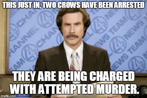 Ron Burgundy Meme |  THIS JUST IN, TWO CROWS HAVE BEEN ARRESTED; THEY ARE BEING CHARGED WITH ATTEMPTED MURDER. | image tagged in memes,ron burgundy | made w/ Imgflip meme maker