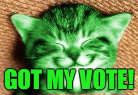 happy RayCat | GOT MY VOTE! | image tagged in happy raycat | made w/ Imgflip meme maker