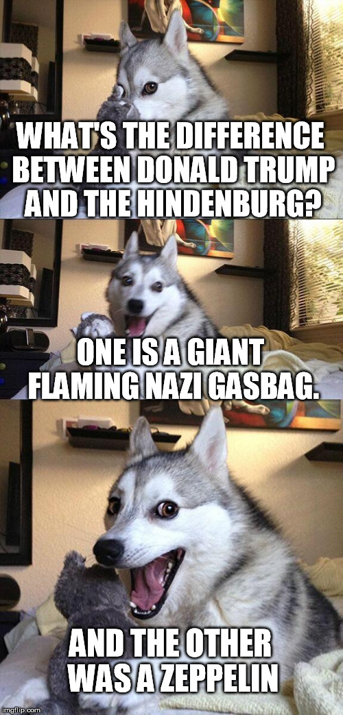I kind of like him.  but he does make great meme fodder | WHAT'S THE DIFFERENCE BETWEEN DONALD TRUMP AND THE HINDENBURG? ONE IS A GIANT FLAMING NAZI GASBAG. AND THE OTHER WAS A ZEPPELIN | image tagged in memes,bad pun dog,donald trump,hindenburg,nazi,gasbag | made w/ Imgflip meme maker