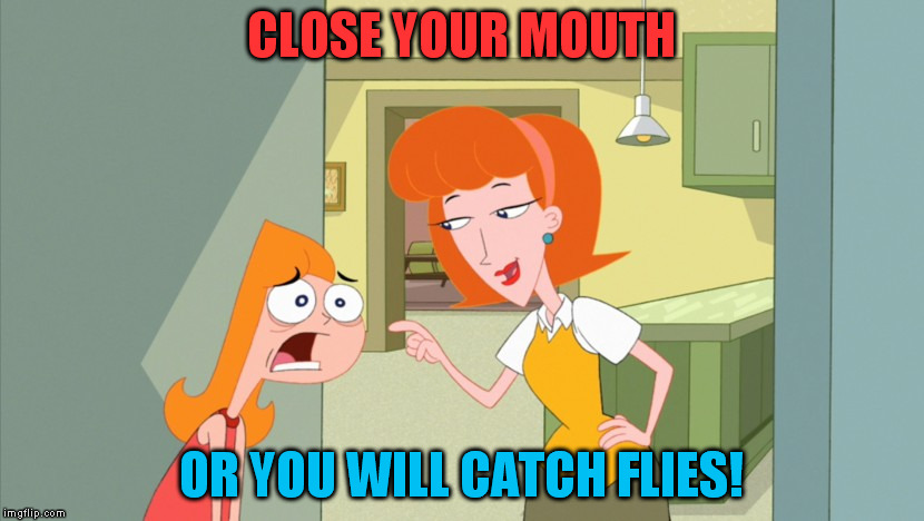CLOSE YOUR MOUTH; OR YOU WILL CATCH FLIES! | image tagged in mom,candace flynn,phineas and ferb | made w/ Imgflip meme maker