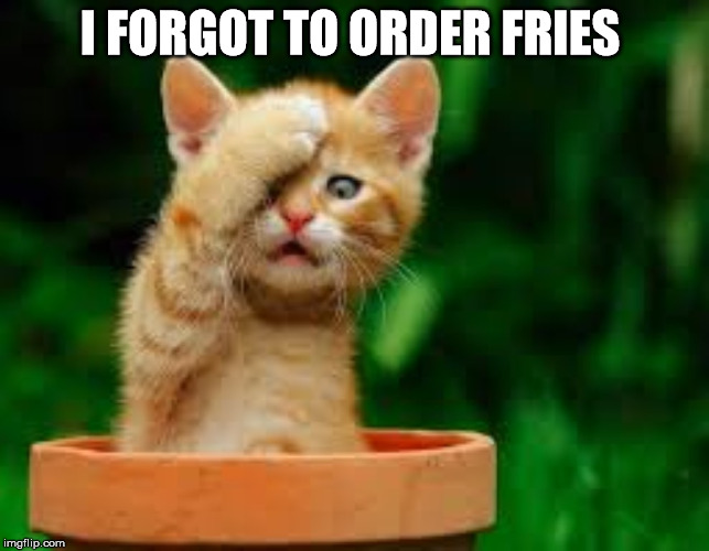 I FORGOT TO ORDER FRIES | made w/ Imgflip meme maker