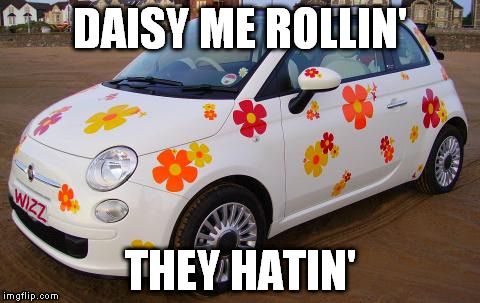 Car Pun | DAISY ME ROLLIN' THEY HATIN' | image tagged in flower,they see me rolling,daisy | made w/ Imgflip meme maker