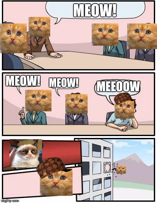 Boardroom Meeting Suggestion Meme | MEOW! MEOW! MEOW! MEEOOW | image tagged in memes,boardroom meeting suggestion,scumbag | made w/ Imgflip meme maker