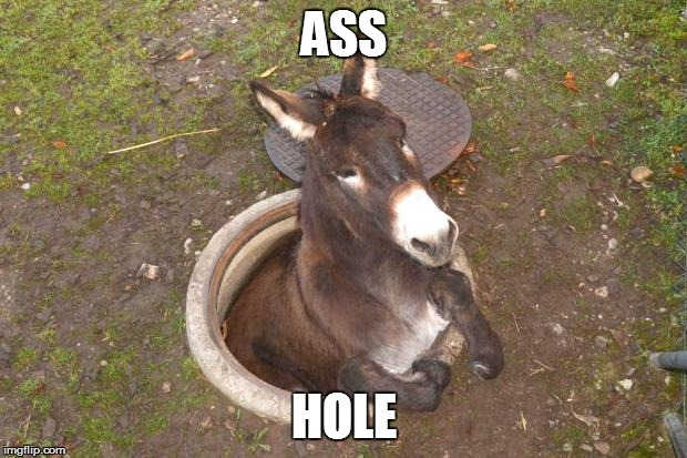 Asshole | ASS HOLE | image tagged in asshole | made w/ Imgflip meme maker