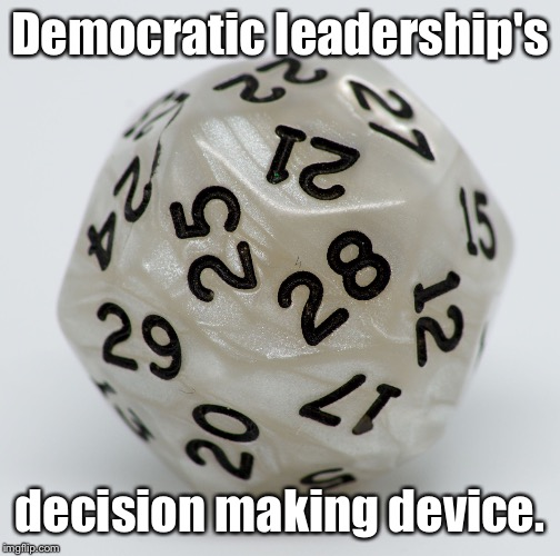 Delegate selection skills | Democratic leadership's decision making device. | image tagged in patriots coin toss,iowa caucus,democrats,coin toss,delegates | made w/ Imgflip meme maker
