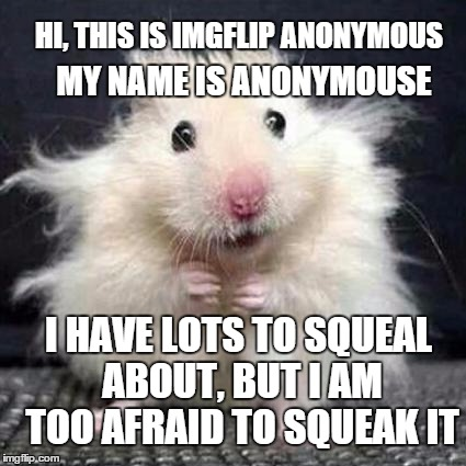 imgflip anonymouse |  MY NAME IS ANONYMOUSE; HI, THIS IS IMGFLIP ANONYMOUS; I HAVE LOTS TO SQUEAL ABOUT, BUT I AM TOO AFRAID TO SQUEAK IT | image tagged in stressed mouse,memes,anonymouse,anonymous,funny memes,mean while on imgflip | made w/ Imgflip meme maker