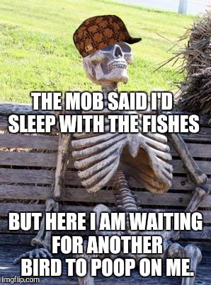 Waiting Skeleton Meme | THE MOB SAID I'D SLEEP WITH THE FISHES BUT HERE I AM WAITING FOR ANOTHER BIRD TO POOP ON ME. | image tagged in memes,waiting skeleton,scumbag | made w/ Imgflip meme maker