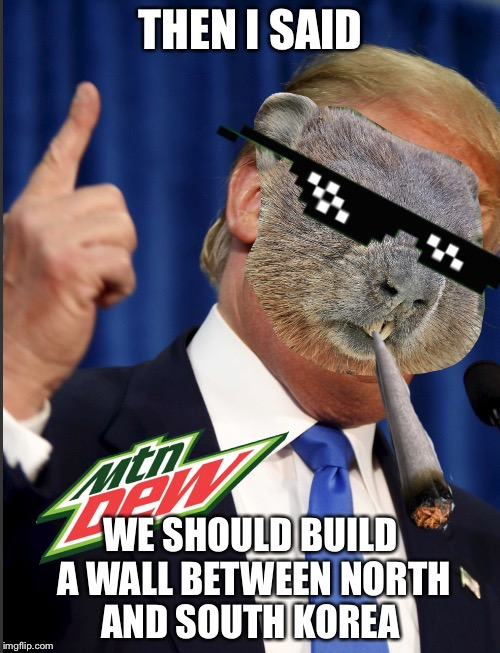 Mlg Groundhog | THEN I SAID WE SHOULD BUILD A WALL BETWEEN NORTH AND SOUTH KOREA | image tagged in mlg groundhog | made w/ Imgflip meme maker