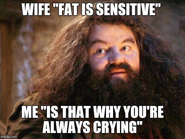 Fun Wife Meme : Turning fun times into sad times with one sentence imgflip