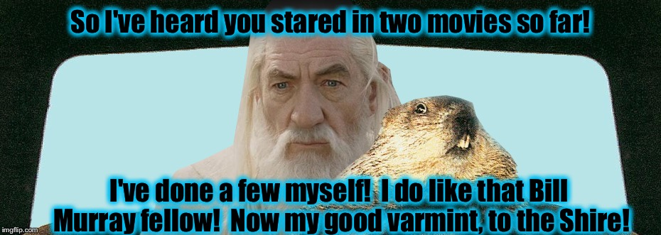 Gandalf Groundhog  | So I've heard you stared in two movies so far! I've done a few myself!  I do like that Bill Murray fellow!  Now my good varmint, to the Shir | image tagged in gandalf groundhog | made w/ Imgflip meme maker