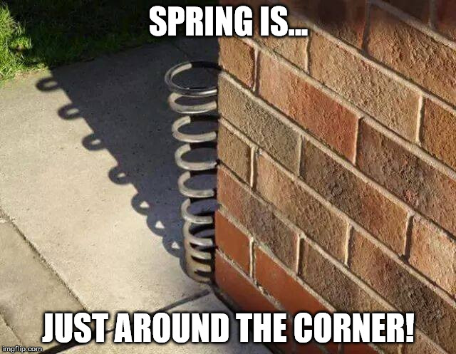 Spring is just around the corner. | SPRING IS... JUST AROUND THE CORNER! | image tagged in soltice,spring,summer,warmer season scumbag steve,winter,fall | made w/ Imgflip meme maker