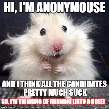 I express my views anonymousely |  HI, I'M ANONYMOUSE; AND I THINK ALL THE CANDIDATES PRETTY MUCH SUCK; SO, I'M THINKING OF RUNNING (INTO A HOLE) | image tagged in anonymouse,memes,funny memes,political | made w/ Imgflip meme maker