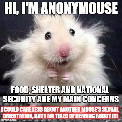 I express my views anonymousely |  HI, I'M ANONYMOUSE; FOOD, SHELTER AND NATIONAL SECURITY ARE MY MAIN CONCERNS; I COULD CARE LESS ABOUT ANOTHER MOUSE'S SEXUAL ORIENTATION, BUT I AM TIRED OF HEARING ABOUT IT! | image tagged in anonymouse,memes,funny memes,gay pride,political issues | made w/ Imgflip meme maker
