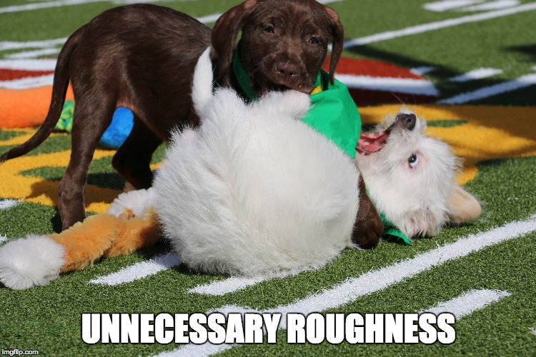 UNNECESSARY ROUGHNESS | made w/ Imgflip meme maker