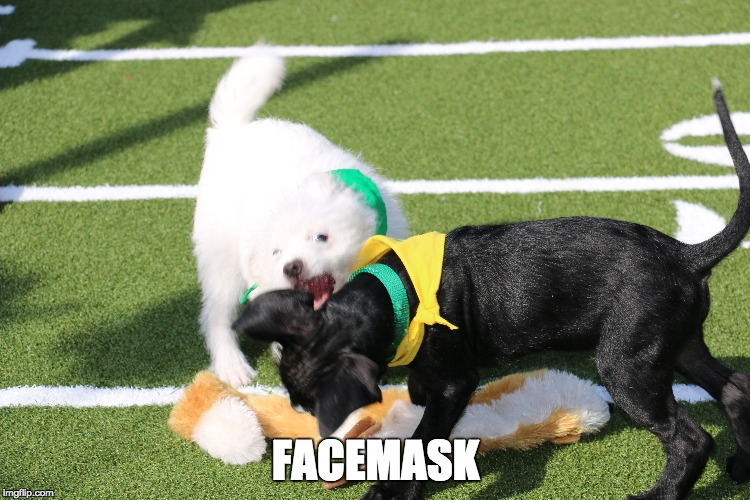 FACEMASK | made w/ Imgflip meme maker
