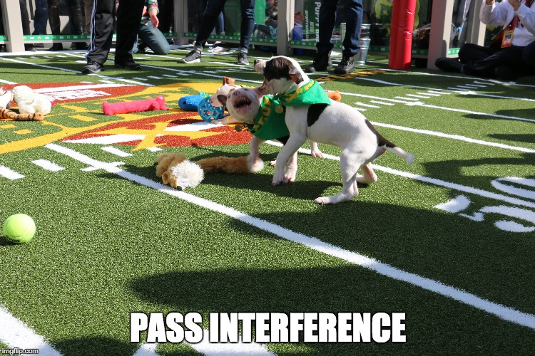 PASS INTERFERENCE | made w/ Imgflip meme maker