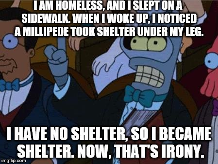 now thats irony | I AM HOMELESS, AND I SLEPT ON A SIDEWALK. WHEN I WOKE UP, I NOTICED A MILLIPEDE TOOK SHELTER UNDER MY LEG. I HAVE NO SHELTER, SO I BECAME SH | image tagged in now thats irony | made w/ Imgflip meme maker