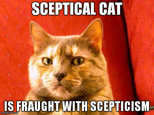 Suspicious Cat | SCEPTICAL CAT IS FRAUGHT WITH SCEPTICISM | image tagged in memes,suspicious cat | made w/ Imgflip meme maker