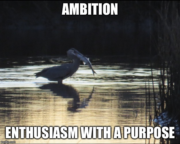 AMBITION ENTHUSIASM WITH A PURPOSE | image tagged in ambition | made w/ Imgflip meme maker
