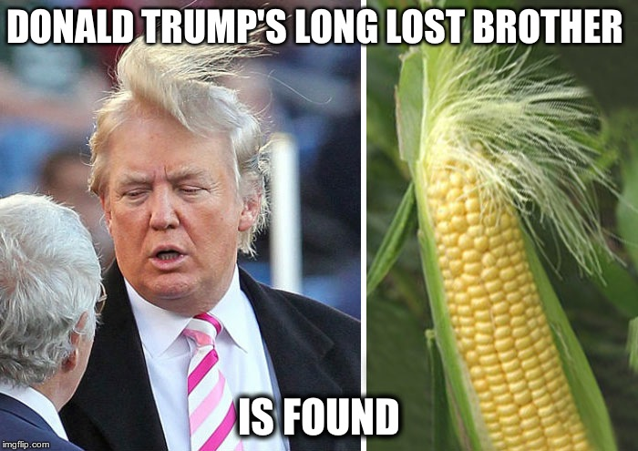 Donald Trump | DONALD TRUMP'S LONG LOST BROTHER IS FOUND | image tagged in donald trump | made w/ Imgflip meme maker