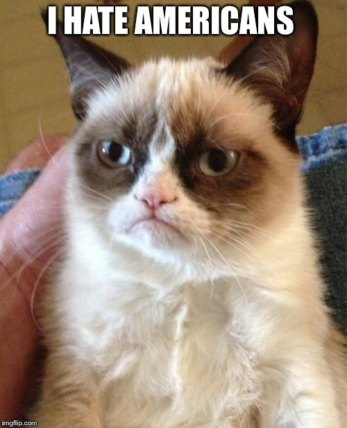Grumpy Cat Meme | I HATE AMERICANS | image tagged in memes,grumpy cat | made w/ Imgflip meme maker