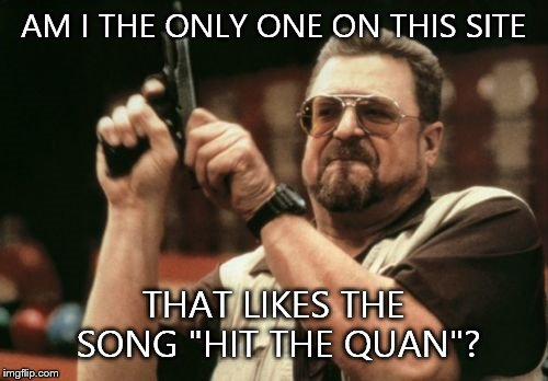 "I know almost everyone my age likes it. Not sure about you guys though... |  AM I THE ONLY ONE ON THIS SITE; THAT LIKES THE SONG ""HIT THE QUAN""? 