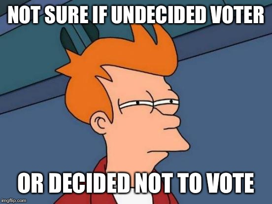 With all the reality tv government candidates plying for your vote.... | NOT SURE IF UNDECIDED VOTER OR DECIDED NOT TO VOTE | image tagged in memes,futurama fry,political correctness,undecided voter,who cares | made w/ Imgflip meme maker