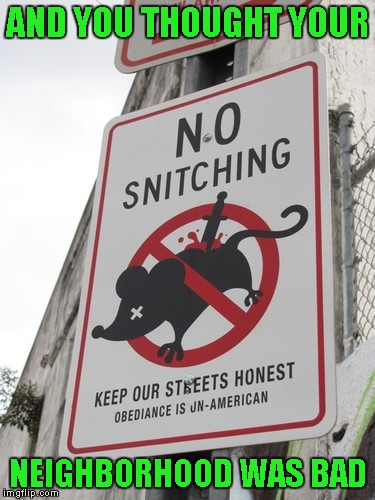 There's something to be said for a neighborhood with integrity I guess. | AND YOU THOUGHT YOUR NEIGHBORHOOD WAS BAD | image tagged in no rats allowed,funny street signs,funny signs,memes,funny,signs | made w/ Imgflip meme maker