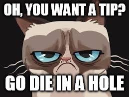 yq7it grumpy cat cartoon memes imgflip