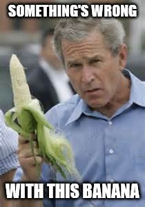 There once was another Bush running around... | SOMETHING'S WRONG WITH THIS BANANA | image tagged in memes,george bush,banana | made w/ Imgflip meme maker
