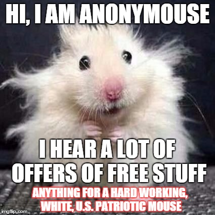 i express my views anonymousely |  HI, I AM ANONYMOUSE; I HEAR A LOT OF OFFERS OF FREE STUFF; ANYTHING FOR A HARD WORKING, WHITE, U.S. PATRIOTIC MOUSE | image tagged in anonymouse,memes,funny memes,political | made w/ Imgflip meme maker