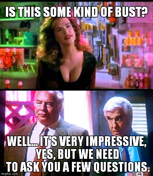 Frank! | IS THIS SOME KIND OF BUST? WELL... IT'S VERY IMPRESSIVE, YES, BUT WE NEED TO ASK YOU A FEW QUESTIONS. | image tagged in memes,frank,naked gun | made w/ Imgflip meme maker