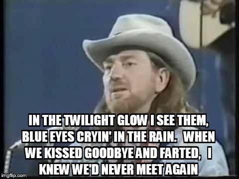 A 4 year old;  Artfully Butchering Lyrics | image tagged in country  western,willie nelson | made w/ Imgflip meme maker