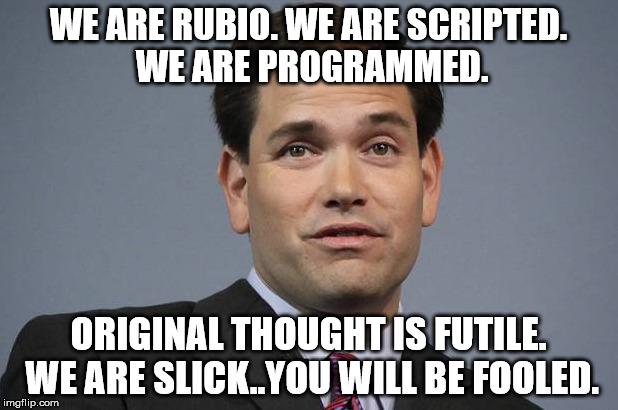 ys03w marco rubio imgflip,Marco Rubio Memes