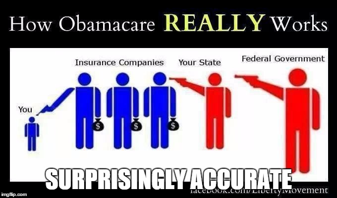Image result for funny obamacare pictures