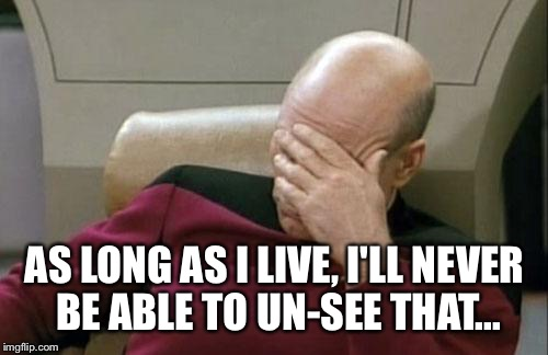 Captain Picard Facepalm Meme | AS LONG AS I LIVE, I'LL NEVER BE ABLE TO UN-SEE THAT... | image tagged in memes,captain picard facepalm | made w/ Imgflip meme maker