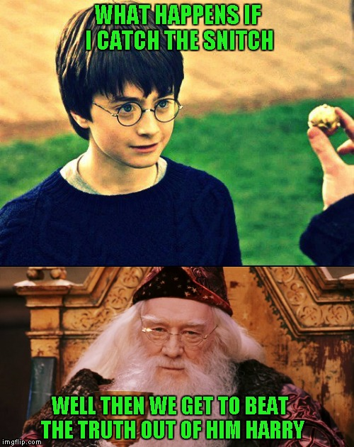 WHAT HAPPENS IF I CATCH THE SNITCH WELL THEN WE GET TO BEAT THE TRUTH OUT OF HIM HARRY | made w/ Imgflip meme maker