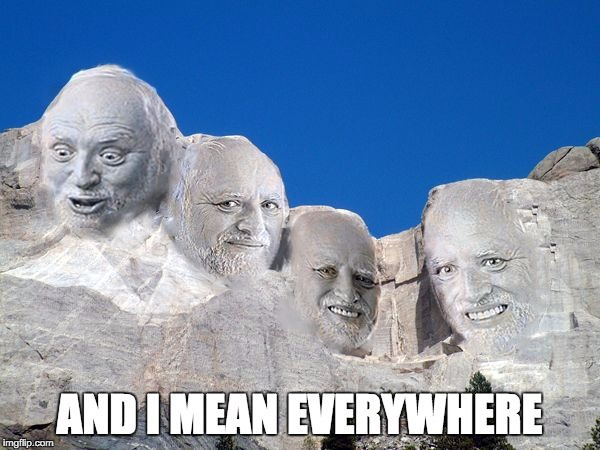 Harold Mt Rushmore | AND I MEAN EVERYWHERE | image tagged in harold mt rushmore | made w/ Imgflip meme maker