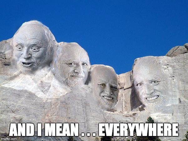 Harold Mt Rushmore | AND I MEAN . . . EVERYWHERE | image tagged in harold mt rushmore | made w/ Imgflip meme maker