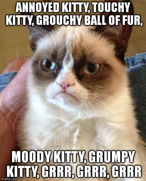 I like this version of the song much better... | ANNOYED KITTY, TOUCHY KITTY, GROUCHY BALL OF FUR, MOODY KITTY, GRUMPY KITTY, GRRR, GRRR, GRRR | image tagged in memes,grumpy cat,sheldon big bang theory | made w/ Imgflip meme maker