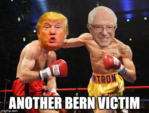 ANOTHER BERN VICTIM | made w/ Imgflip meme maker
