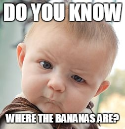 DO YOU KNOW WHERE THE BANANAS ARE? | image tagged in memes,skeptical baby | made w/ Imgflip meme maker