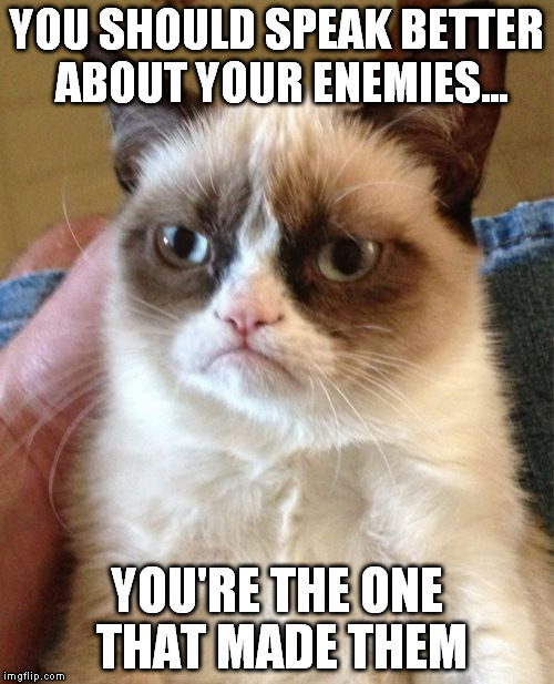 You make your own enemies...!!!  | YOU SHOULD SPEAK BETTER ABOUT YOUR ENEMIES... YOU'RE THE ONE THAT MADE THEM | image tagged in memes,grumpy cat | made w/ Imgflip meme maker