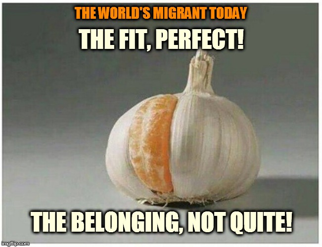 immigrants  |  THE FIT, PERFECT! THE WORLD'S MIGRANT TODAY; THE BELONGING, NOT QUITE! | image tagged in immigrants | made w/ Imgflip meme maker